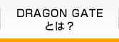 DRAGON GATEとは?
